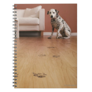 USA, Illinois, Metamora, Close-up of floor with Spiral Note Book