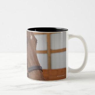 USA, Illinois, Metamora, Portrait of smiling Two-Tone Coffee Mug