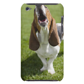 USA, Illinois, Washington, Portrait of Bassett Barely There iPod Cover