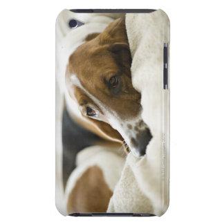 USA, Illinois, Washington, Portrait of Bassett iPod Touch Case-Mate Case
