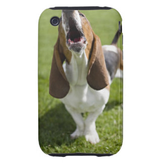USA, Illinois, Washington, Portrait of Bassett Tough iPhone 3 Cover