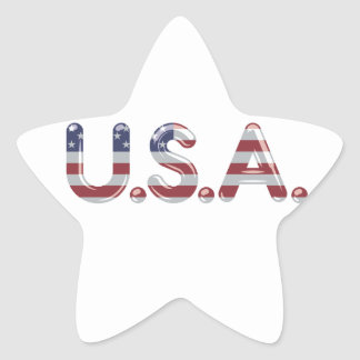USA in chrome lettering Star Sticker