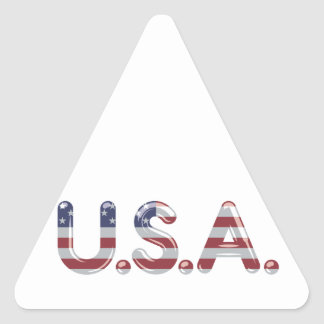 USA in chrome lettering Triangle Sticker