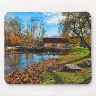 USA, Indiana, Cataract Falls State Recreation Mouse Pad