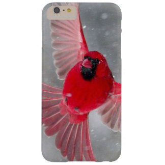 USA, Indiana, Indianapolis. A male cardinal Barely There iPhone 6 Plus Case