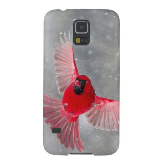 USA, Indiana, Indianapolis. A male cardinal Case For Galaxy S5
