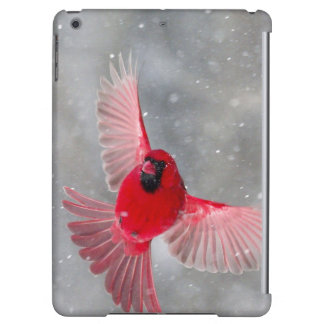USA, Indiana, Indianapolis. A male cardinal Cover For iPad Air