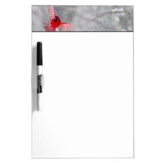 USA, Indiana, Indianapolis. A male cardinal Dry-Erase Board