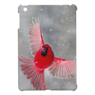 USA, Indiana, Indianapolis. A male cardinal iPad Mini Cover