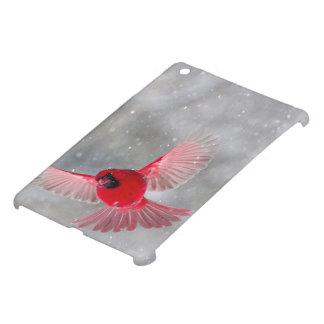 USA, Indiana, Indianapolis. A male cardinal iPad Mini Case