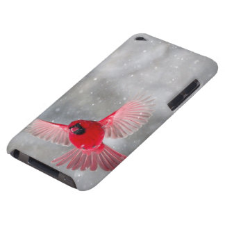 USA, Indiana, Indianapolis. A male cardinal iPod Touch Case