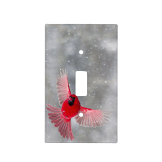 USA, Indiana, Indianapolis. A male cardinal Light Switch Cover