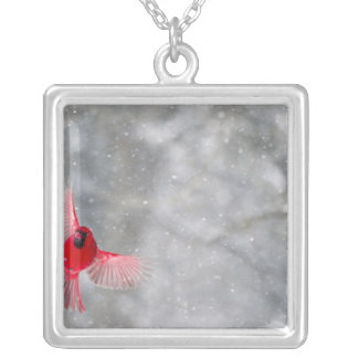 USA, Indiana, Indianapolis. A male cardinal Personalized Necklace