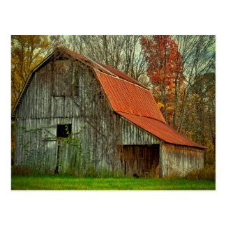 USA, Indiana. rural landscape, vine-covered barn Postcard