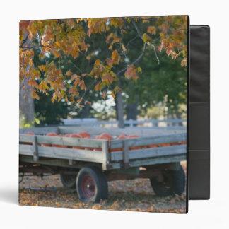USA, IOWA, Madison County, Winterset: Howell's Binder