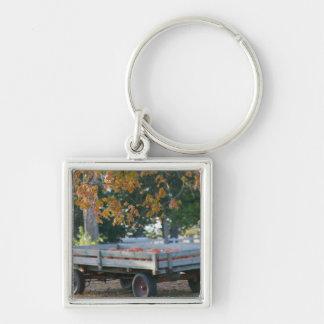 USA, IOWA, Madison County, Winterset: Howell's Keychain