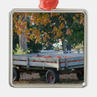 USA, IOWA, Madison County, Winterset: Howell's Metal Ornament