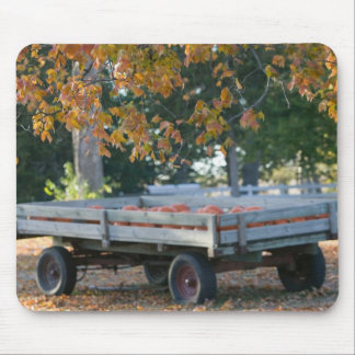 USA, IOWA, Madison County, Winterset: Howell's Mouse Pad