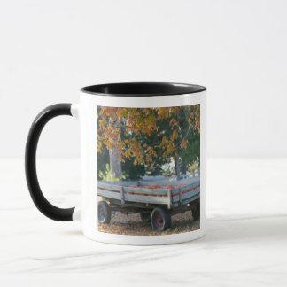 USA, IOWA, Madison County, Winterset: Howell's Mug