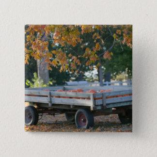 USA, IOWA, Madison County, Winterset: Howell's Pinback Button