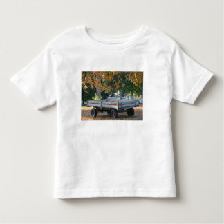USA, IOWA, Madison County, Winterset: Howell's Toddler T-shirt