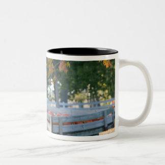 USA, IOWA, Madison County, Winterset: Howell's Two-Tone Coffee Mug