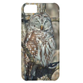 USA, Kansas. Barred Owl (Strix Varia) Cover For iPhone 5C