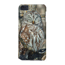 USA, Kansas. Barred Owl (Strix Varia) iPod Touch (5th Generation) Cover