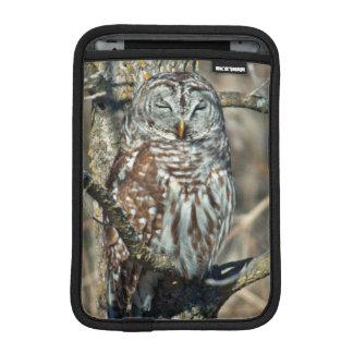 USA, Kansas. Barred Owl (Strix Varia) Sleeve For iPad Mini
