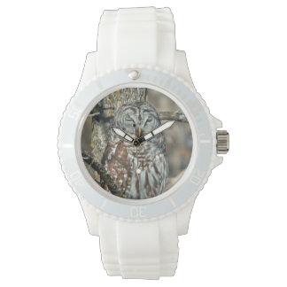 USA, Kansas. Barred Owl (Strix Varia) Wrist Watches