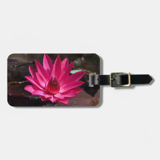 USA, Kansas, Bright Red Water Lilly Tag For Luggage