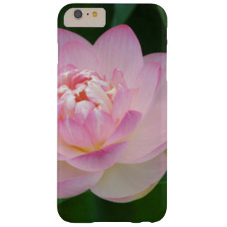 USA, Kansas, Pink Water Lilly Barely There iPhone 6 Plus Case