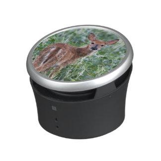 USA, Kansas, Small Whitetail Deer Bluetooth Speaker