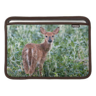 USA, Kansas, Small Whitetail Deer Sleeve For MacBook Air