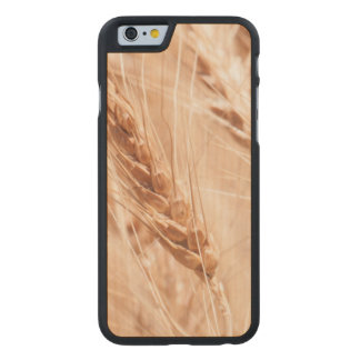USA, Kansas, Wheat At Harvest Time Carved® Maple iPhone 6 Slim Case