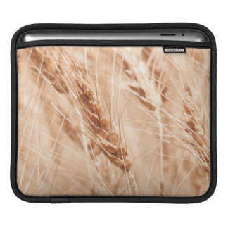 USA, Kansas, Wheat At Harvest Time Sleeve For iPads