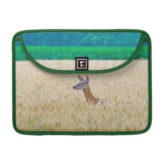 USA, Kansas, White Tail Doe Crossing Wheat Sleeve For MacBook Pro