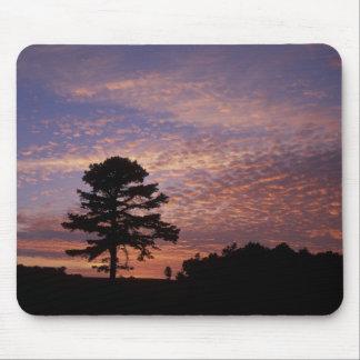 USA, Kentucky, Cumberland Gap National Mouse Pad