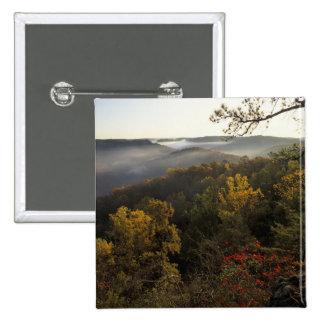 USA, Kentucky. Daniel Boone National Forest. Pinback Button