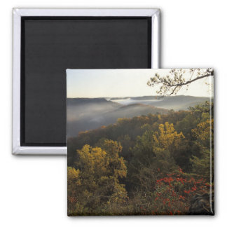 USA, Kentucky. Daniel Boone National Forest. Magnet