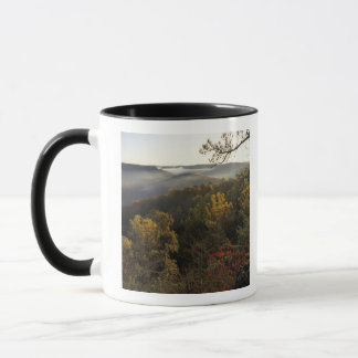 USA, Kentucky. Daniel Boone National Forest. Mug