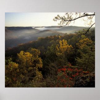 USA, Kentucky. Daniel Boone National Forest. Poster