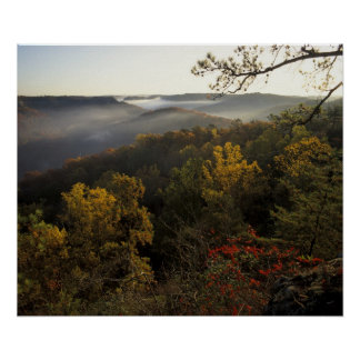 USA, Kentucky. Daniel Boone National Forest. Posters
