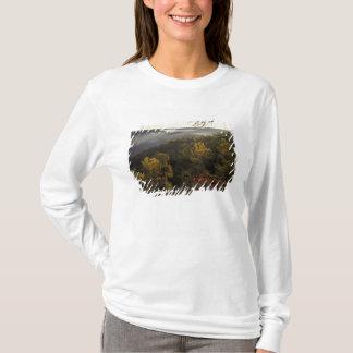 USA, Kentucky. Daniel Boone National Forest. T-Shirt