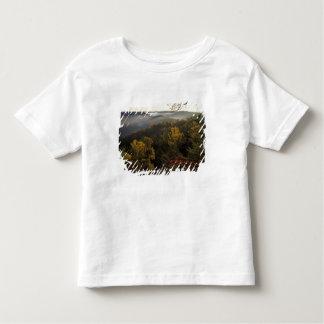 USA, Kentucky. Daniel Boone National Forest. Toddler T-shirt