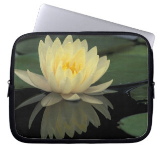 USA, Kentucky, Louisville Domestic water lily, Laptop Computer Sleeve