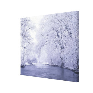 USA, Kentucky, Louisville. Snow covered Canvas Print