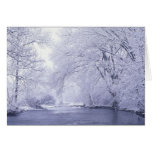 USA, Kentucky, Louisville. Snow covered Greeting Card