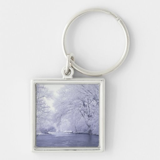 USA, Kentucky, Louisville. Snow covered Silver-Colored Square Keychain