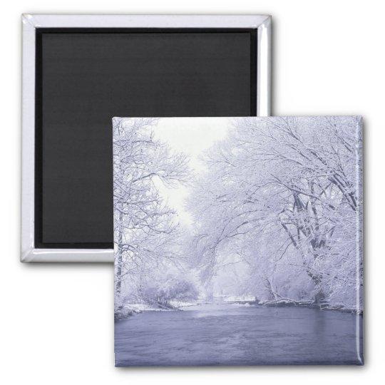 USA, Kentucky, Louisville. Snow covered Magnet